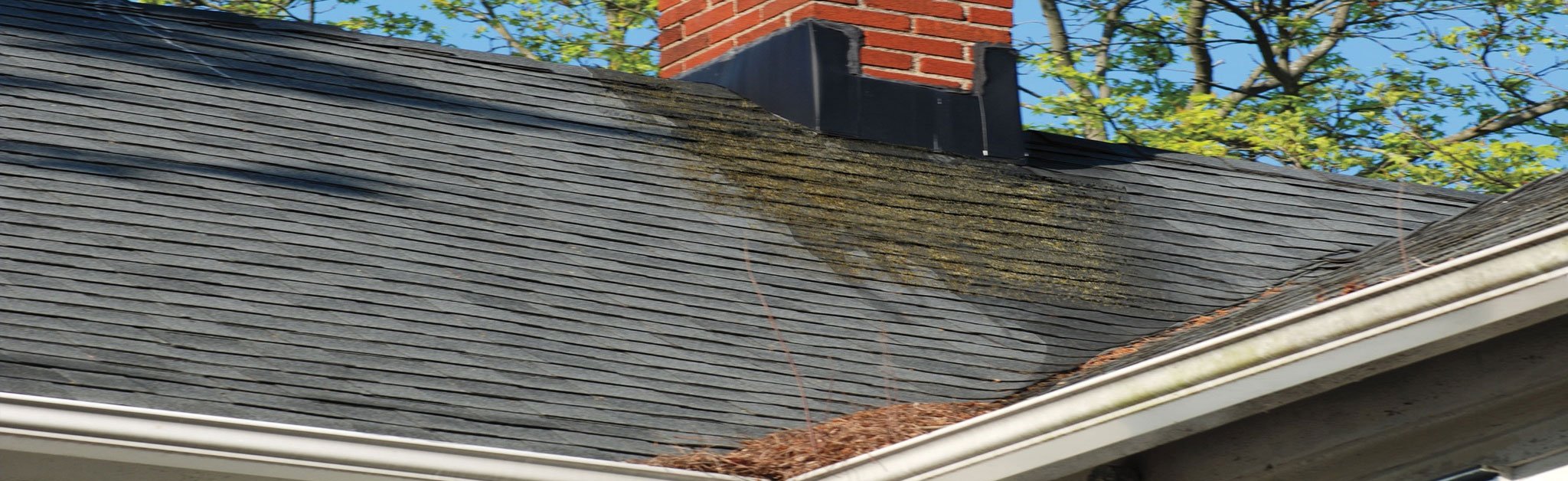 Reveles Roofing Images